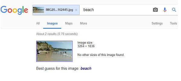 Búsqueda de imágenes visuales en el motor de búsqueda inversa de Google