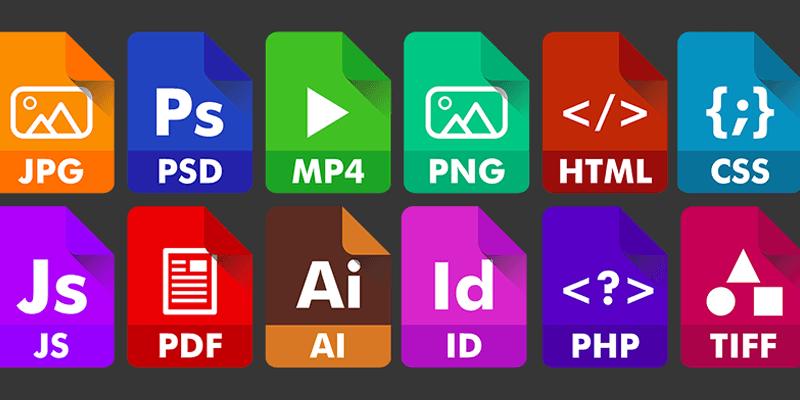 JPG versus.  PNG vs GIF: diferencias entre formatos de archivo de imagen