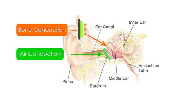 mecanismo de conducción ósea