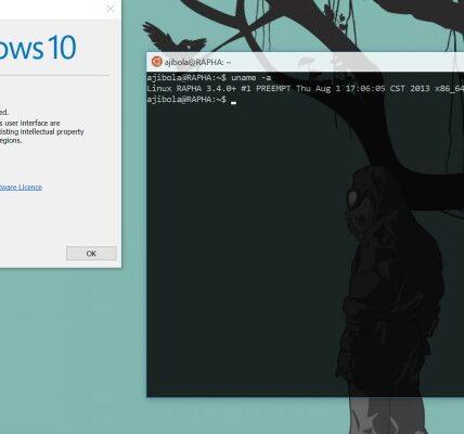 Windows 10 Pronto podrá acceder a los archivos WSL de Linux