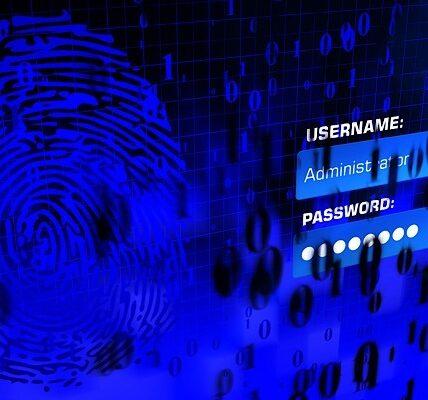 ¿Utiliza un administrador de contraseñas?