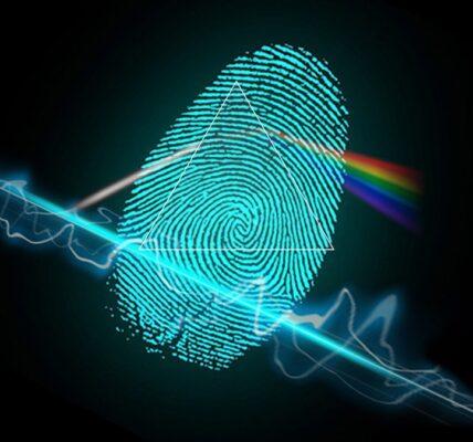 ¿Cómo funcionan los escáneres de huellas dactilares?