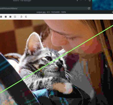 Cómo comprimir y cambiar el tamaño de las imágenes en Thunar File Manager en Linux