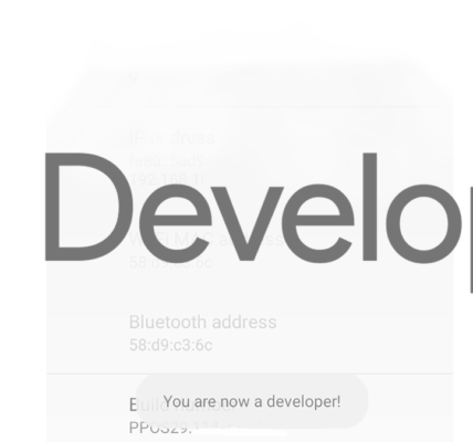 Cosas que puedes hacer en secreto Android Opciones de desarrollador
