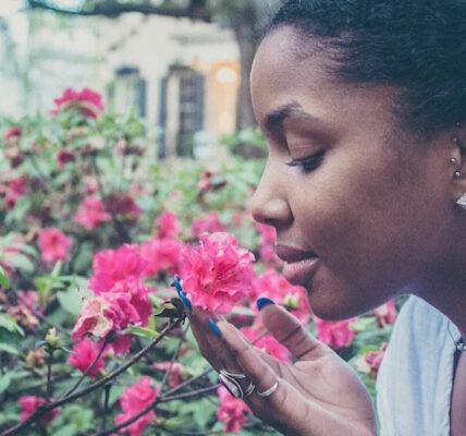 La inteligencia artificial aprende a reconocer los olores