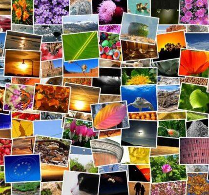 Cómo organizar fotos con la aplicación Fotos habilitada Windows diez