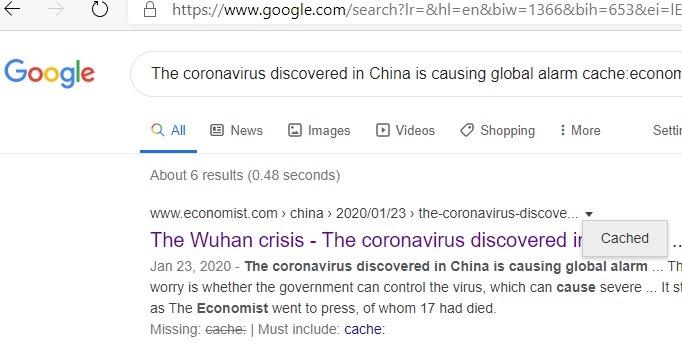 Página de caché específica del sitio de Google