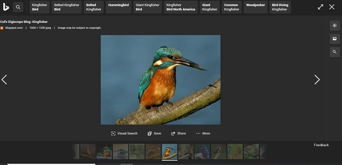 Bing es mejor que el desplazamiento horizontal de imágenes de Google con Bing