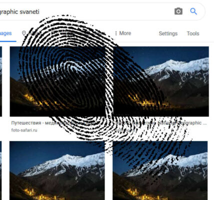 ¿Cómo funciona la búsqueda inversa de imágenes?