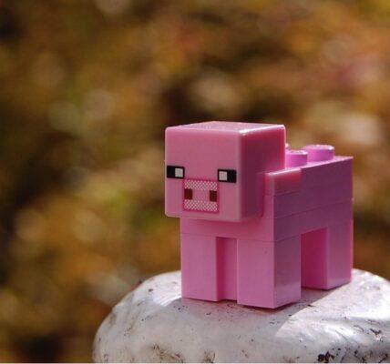 Cómo convertir tu Raspberry Pi en un servidor de Minecraft