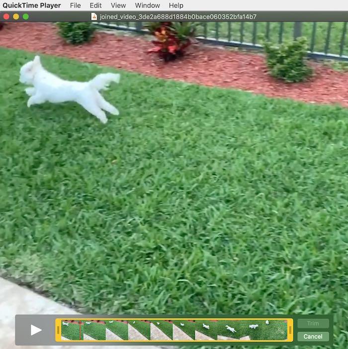 Editar películas de recorte de Quicktime Mac