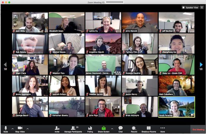 Video grupal de Skype versus Zoom Lockdown