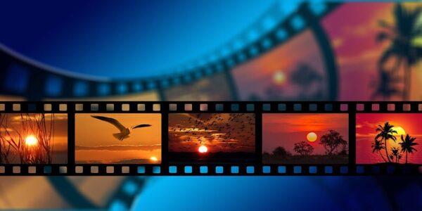 Descargue videos rápidamente con VideoDuke: una licencia de por vida por menos de $ 10
