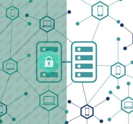 Diferencias entre blockchains permitidos y no autorizados
