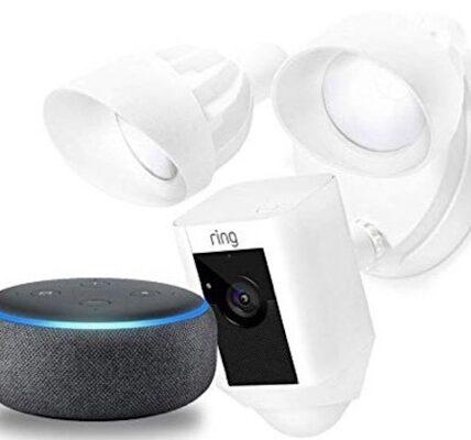 Obtenga la cámara de seguridad Ring Floodlight y Echo Dot por menos de $ 200