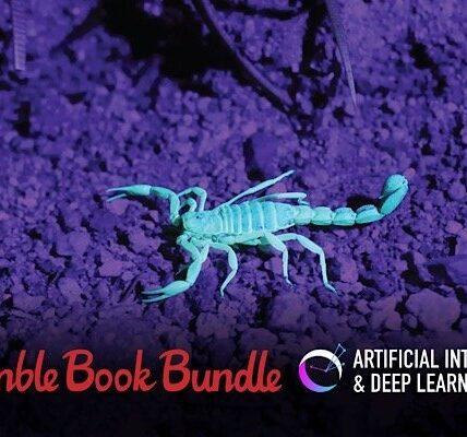 Paquete de libros humildes: inteligencia artificial y aprendizaje profundo
